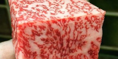 Health Benefits of Wagyu Beef