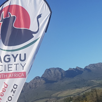 Industry Outlook – Wagyu Conference 2017