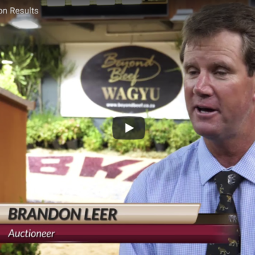 Auction Results – Video 9 Feb 2018